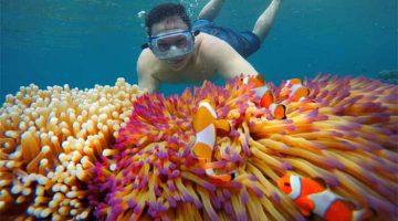 Snorkeling ...